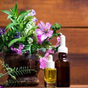 Malva propiedades para la piel