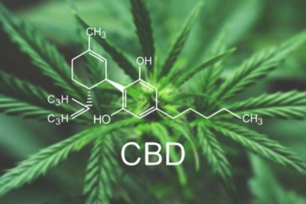 CBD o cannabidiol