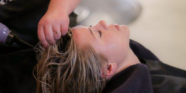 Alcanza el cabello perfecto con las mejores marcas de champús que te presentamos en esta sección