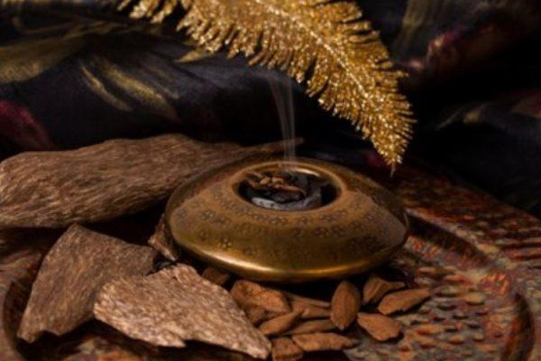perfumes orientales amaderados
