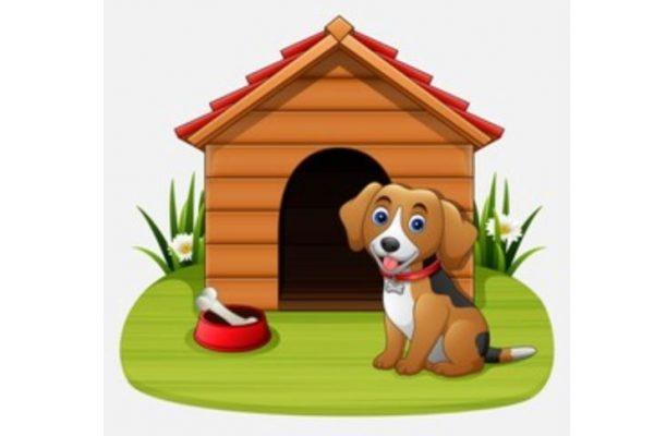 escoger una caseta para perros