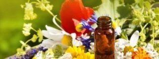 Lista 38 Flores de Bach