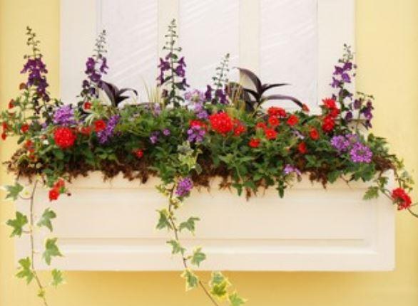 Jardineras rectangulares más vendidas