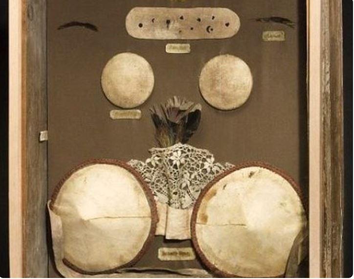 Sujetador de 1880 Museo de la ciencia