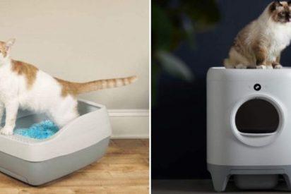 Areneros para gatos autolimpiables mas vendido